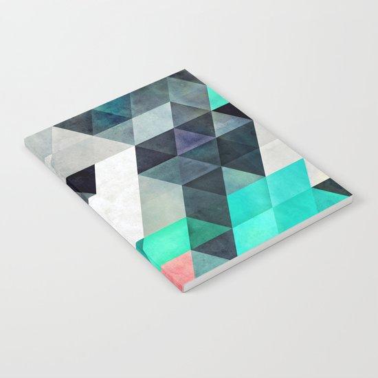flyx Notebook