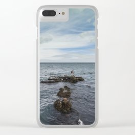 Irish bay and flying seagulls Clear iPhone Case