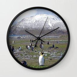 King Penguin Colony Wall Clock