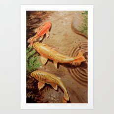 Three Koi Art Print