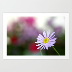 lone daisy II Art Print
