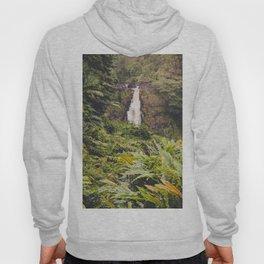 Jungle Waterfall III Hoody