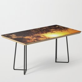 Sunset Silhouettes | Beautiful Nature Coffee Table