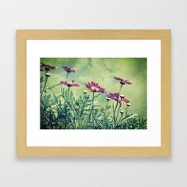 autumn gems Framed Art Print