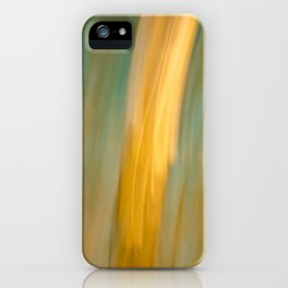 Ancient Gold and Turquoise Texture iPhone Case