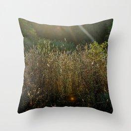 Morning Field Light Throw Pillow