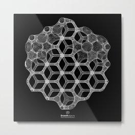 GEOMETRIC NATURE: COGNITIVE HEXAGON b/w Metal Print