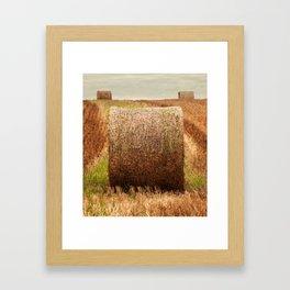 Hay Bale Symmetry Framed Art Print
