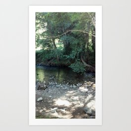 A Seat by the Water Art Print