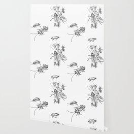 Cucaracha #7 Wallpaper