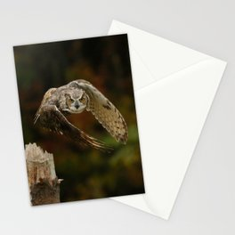 On A Mission Stationery Cards