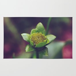 Plant life Rug