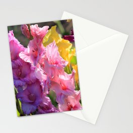 Colorful Gladiolus Stationery Cards