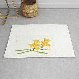 Early Daffodils Rug