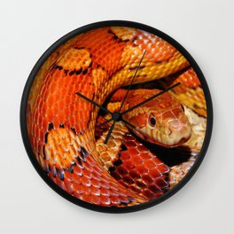 Constrictor Wall Clock