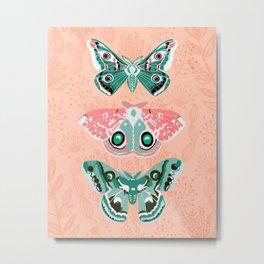 Lepidoptery No. 3 by Andrea Lauren  Metal Print