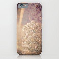 Sunlight Slim Case iPhone 6s