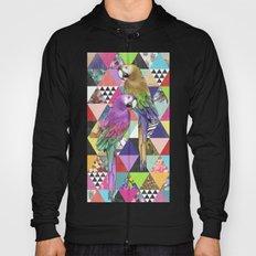 A bit of tropical geometry Hoody