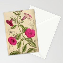 Petunia integrifolia, Solanaceae Stationery Cards