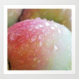 Apples after the Rain Art Print