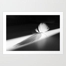 Pluma al sol Art Print