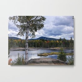 Fall on Moose Bog Metal Print