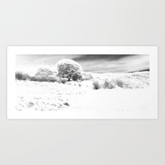 Haresfield In The Snow Art Print