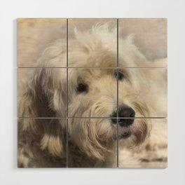Dog Goldendoodle Golden Doodle Wood Wall Art