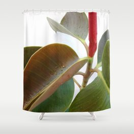 Green Plant Leaves 02 Shower Curtain