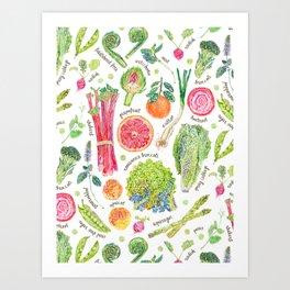 Spring Harvest Pattern Annotated Art Print