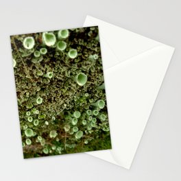 Moss Party Stationery Cards