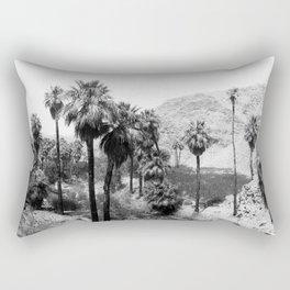 Palm Canyon near Palm Springs c.1901 Rectangular Pillow