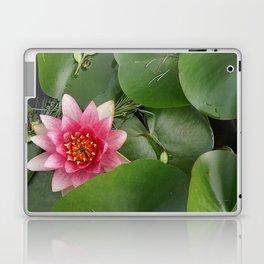 Lotus Flowe_pink1 Laptop & iPad Skin
