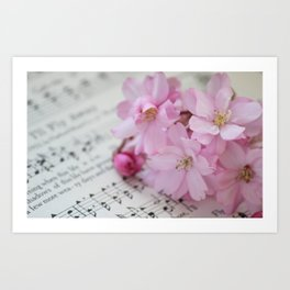 Song of the Cherry Blossom Art Print