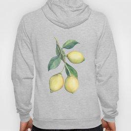Lemon Dreams Hoody
