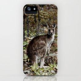 Curious Kanga iPhone Case