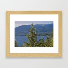 Trees + Tahoe II Framed Art Print