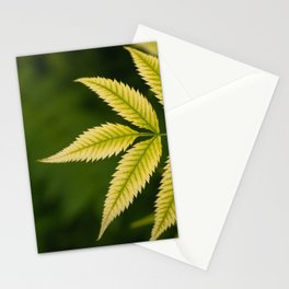 Plant Patterns - Leafy Greens Stationery Cards