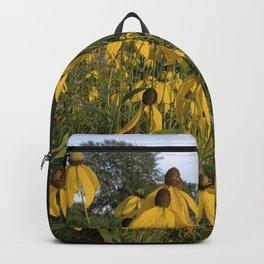 Prairie coneflower Backpack