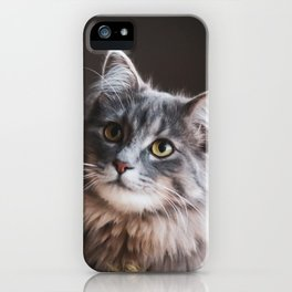 Sweet Kedi I iPhone Case