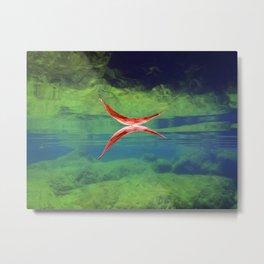 Underwater Reflection Metal Print