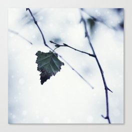 The last leaf Canvas Print