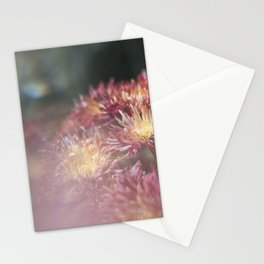 Glitched Flower Stationery Cards