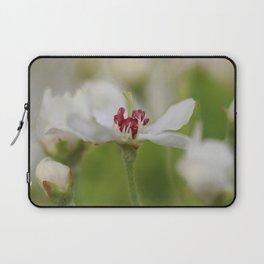 Macro Korean Sun Pear Blossom 2 Laptop Sleeve