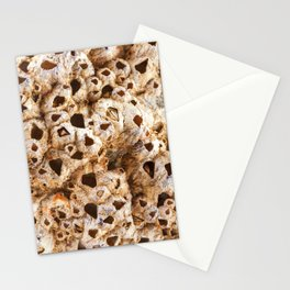 Natural pearl shell. Textural background. Macro Stationery Cards