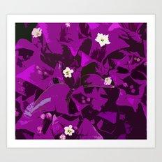 Bouganvilla delight Art Print