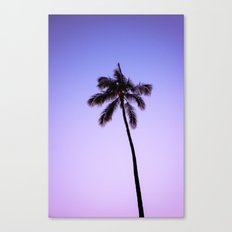 palm tree ver.violet Canvas Print
