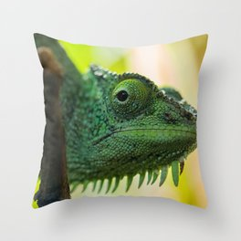 Up Close and Personal with a Chameleon Throw Pillow