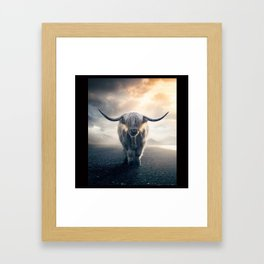 highland cattle scotland Framed Art Print