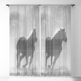 Horses Running Wild Sheer Curtain